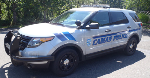 patrolcar4500260.jpg